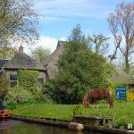 今日熱門文章:【荷蘭】羊角村Giethoorn。美到不可思議的人間仙境